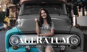 Ageratum Mobile and Desktop Lightroom Presets