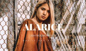 Alarice Lightroom Presets Dekstop and Mobile