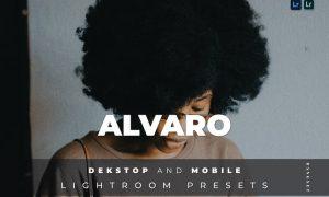 Alvaro Desktop and Mobile Lightroom Preset