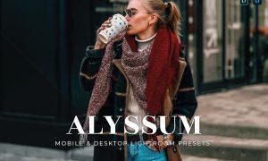 Alyssum Mobile and Desktop Lightroom Presets