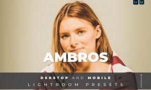 Ambros Desktop and Mobile Lightroom Preset