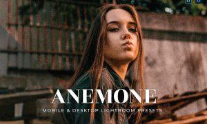 Anemone Mobile and Desktop Lightroom Presets