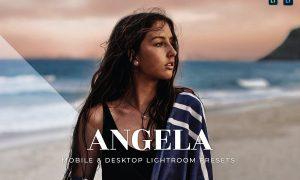 Angela Mobile and Desktop Lightroom Presets