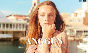 Anggun Mobile and Desktop Lightroom Presets