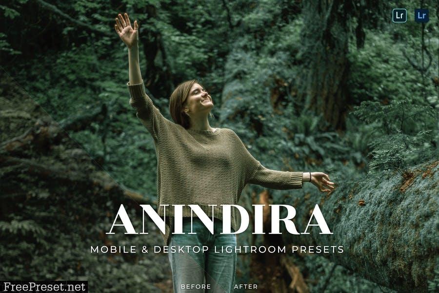 Anindira Mobile and Desktop Lightroom Presets