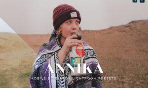 Annika Mobile and Desktop Lightroom Presets