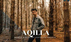 Aqilla Mobile and Desktop Lightroom Presets