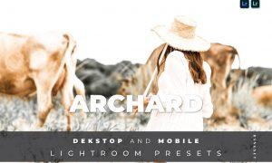 Archard Desktop and Mobile Lightroom Preset