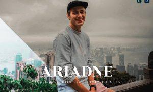 Ariadne Mobile and Desktop Lightroom Presets
