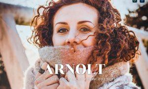 Arnolt Mobile and Desktop Lightroom Presets