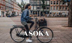 Asoka Mobile and Desktop Lightroom Presets