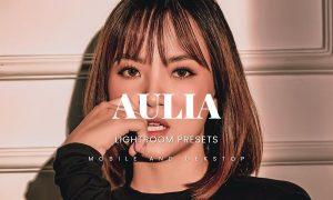 Aulia Lightroom Presets Dekstop and Mobile