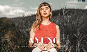 Ayung Mobile and Desktop Lightroom Presets