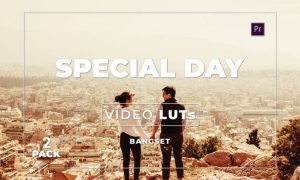 Bangset Special Day Pack 2 Video LUTs