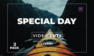 Bangset Special Day Pack 3 Video LUTs