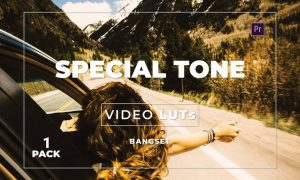 Bangset Special Tone Pack 1 Video LUTs