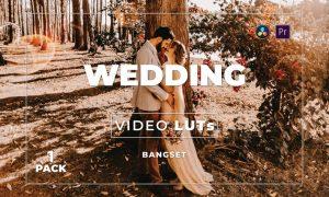 Bangset Wedding Pack 1 Video LUTs
