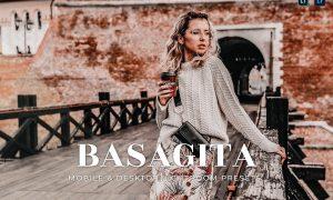 Basagita Mobile and Desktop Lightroom Presets