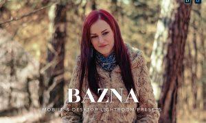 Bazna Mobile and Desktop Lightroom Presets