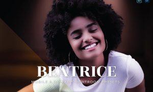 Beatrice Mobile and Desktop Lightroom Presets
