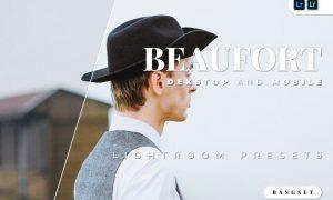 Beaufort Desktop and Mobile Lightroom Preset