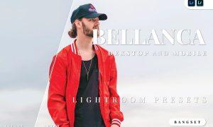 Bellanca Desktop and Mobile Lightroom Preset