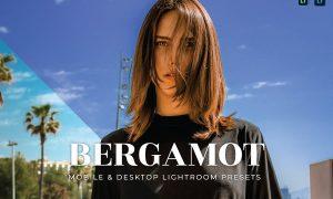 Bergamot Mobile and Desktop Lightroom Presets