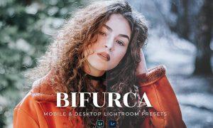 Bifurca Mobile and Desktop Lightroom Presets