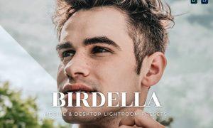 Birdella Mobile and Desktop Lightroom Presets