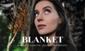 Blanket Mobile and Desktop Lightroom Presets