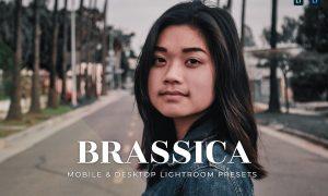 Brassica Mobile and Desktop Lightroom Presets