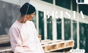 Brisia Desktop and Mobile Lightroom Preset