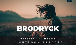 Brodryck Desktop and Mobile Lightroom Preset
