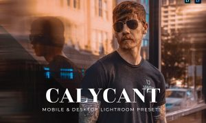 Calycant Mobile and Desktop Lightroom Presets