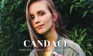 Candace Mobile and Desktop Lightroom Presets