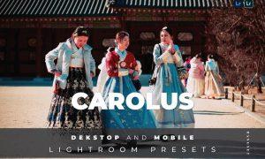 Carolus Desktop and Mobile Lightroom Preset