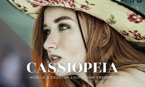 Cassiopeia Mobile and Desktop Lightroom Presets