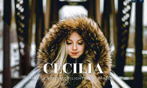 Cecilia Mobile and Desktop Lightroom Presets