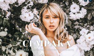 Cempaka Mobile and Desktop Lightroom Presets