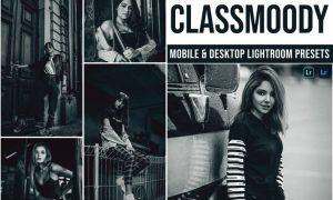 Classmoody Mobile and Desktop Lightroom Presets