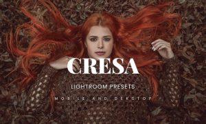 Cresa Lightroom Presets Dekstop and Mobile