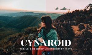Cynaroid Mobile and Desktop Lightroom Presets
