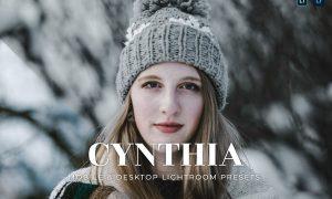 Cynthia Mobile and Desktop Lightroom Presets