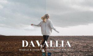 Davallia Mobile and Desktop Lightroom Presets