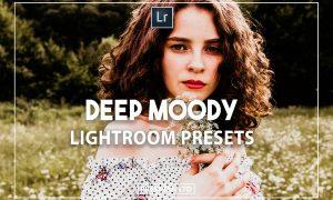 Deep Moody Presets