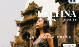 Delfina Desktop and Mobile Lightroom Preset