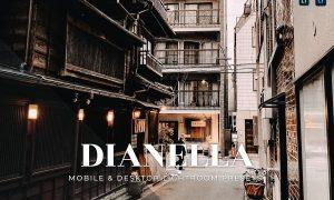 Dianella Mobile and Desktop Lightroom Presets