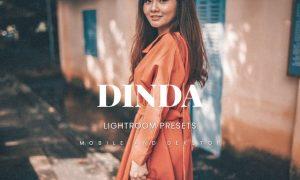 Dinda Lightroom Presets Dekstop and Mobile