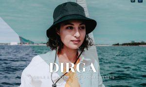 Dirga Mobile and Desktop Lightroom Presets