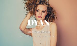 Dyan Lightroom Presets Dekstop and Mobile